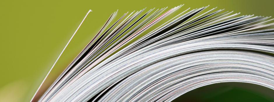 Katalogseiten vor grünem Hintergrund