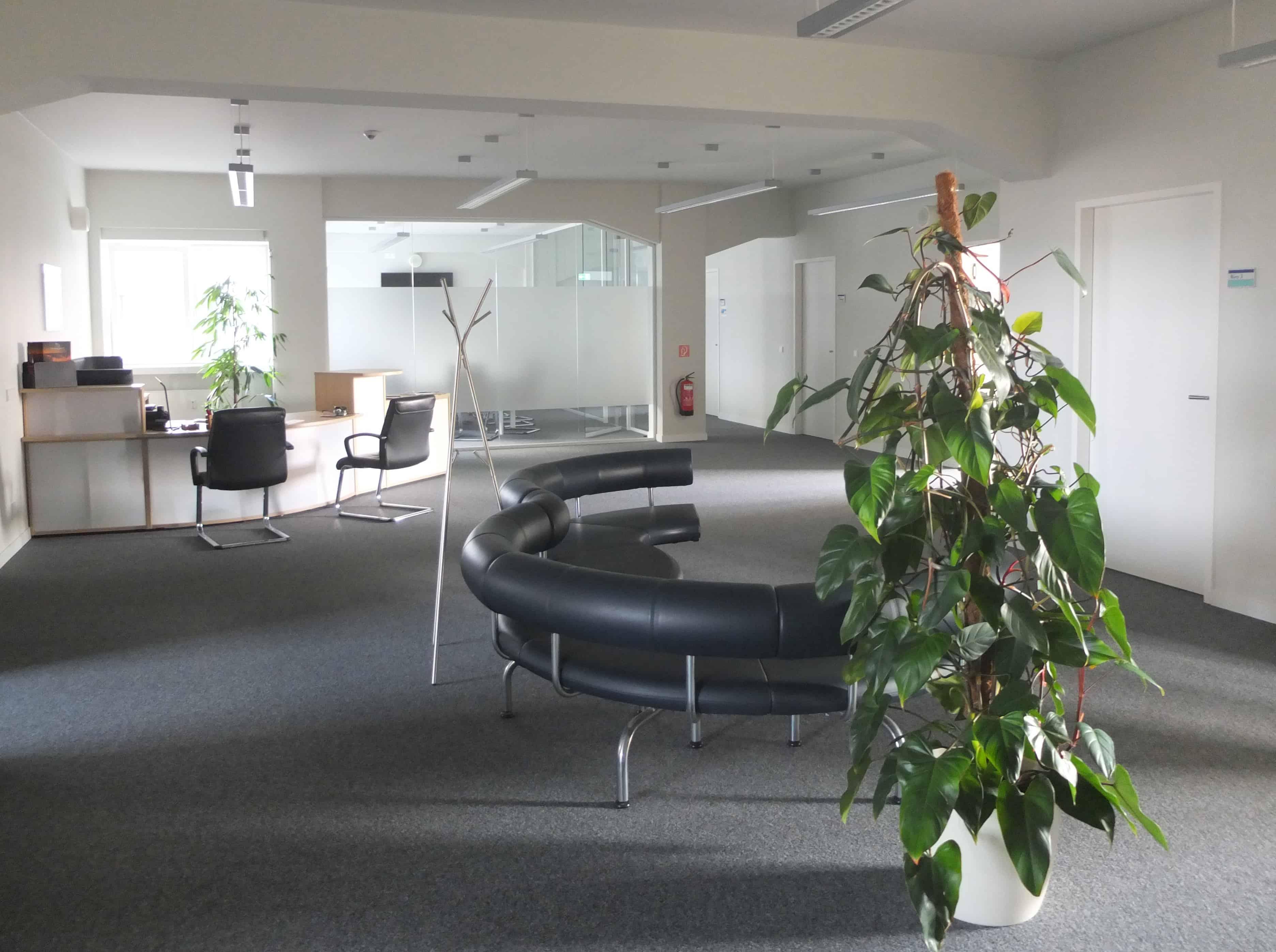 Innenansicht TANNER Büro Chemnitz
